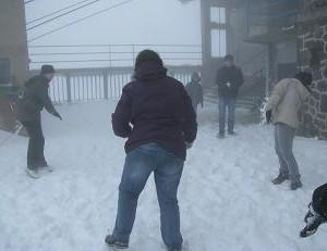 IMG_neige